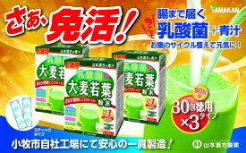 【ふるさと納税】【乳酸菌プラス】山本漢方の大麦若葉粉末(90スティック入り)