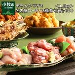 【ふるさと納税】モモムネササミ名古屋コーチン3種盛1.1kg大満足セット