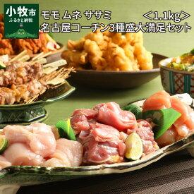 【ふるさと納税】モモ ムネ ササミ 名古屋コーチン3種盛 1.1kg 大満足セット