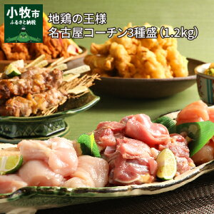 【ふるさと納税】地鶏の王様 名古屋コーチン3種盛<1.2kg>大満足セット