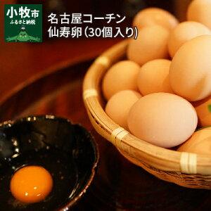 【ふるさと納税】名古屋コーチン卵(30個入り) 仙寿卵 川瀬養鶏 地鶏 日本三大地鶏 鶏卵 たまご 新鮮 国産 産みたて 濃厚 発祥の地 小牧