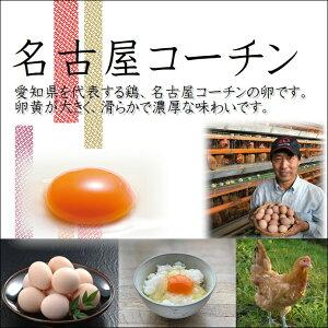 【ふるさと納税】日本三大地鶏!! 本当に美味しい食べ物は調味料の味に負けません!「純系 名古屋コーチンの卵」(30個) 卵 玉子 30個 鶏 名古屋 名古屋コーチン 地鶏 日本三大地鶏
