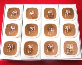 【ふるさと納税】No.021 知多銘菓 梅ぜりぃ 12ヶ入 / 和風ゼリー うめ ウメ 土産 愛知県 特産品