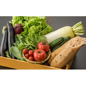 【ふるさと納税】とくとく市場厳選 旬の野菜詰合せセット 【野菜・セット・詰合せ】