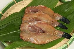 【魚太郎】知多半島の恵みセット