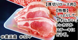 【ふるさと納税】ブランド豚【3キロ超え!】【小分け】がうれしい【SPF豚】の【恋美豚】セット※北海道・沖縄・離島の方は量が異なりますので、下記内容量欄で確認してください。