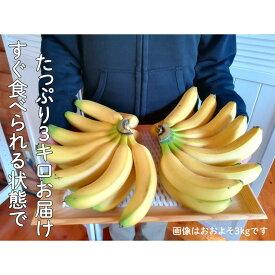 【ふるさと納税】超希少!国産完熟バナナ(美浜町産)モッチリ系の品種をたっぷり3kgすぐ食べられる状態でお届け!※9月下旬ごろから順次発送