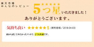 【ふるさと納税】エアウィーヴエアパッド016