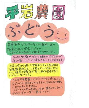 【ふるさと納税】幸田町産ぶどう使用Sakazakiワイン2種詰め合わせ