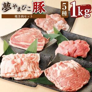 【ふるさと納税】夢やまびこ豚 焼肉セット 1.0kg 合計1kg 5種類 (ロース・肩ロース・バラ・ヒレ・小間切れ) 豚肉 肉 詰め合わせ セット 焼肉用 焼き肉 BBQ 小分け 真空パック 冷蔵 送料無料