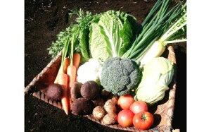 【ふるさと納税】069 新鮮野菜!詰め合わせセット「伊勢の大地のめぐみ」