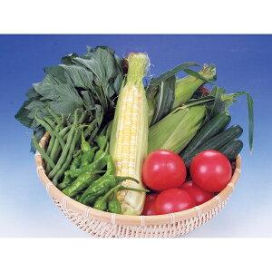 【ふるさと納税】旬の野菜詰合せ おまかせセット【限定20/月】