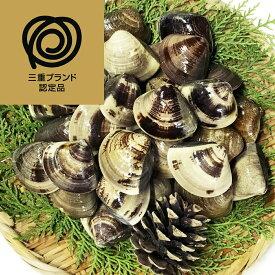 【ふるさと納税】 マルヨシ水産 桑名産中粒天然蛤 0.9kg
