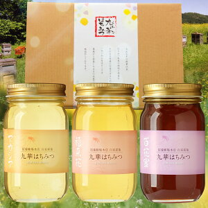 【ふるさと納税】 舘養蜂場本店 九華はちみつ 300g×3本