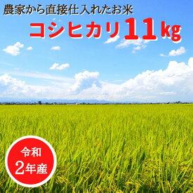 【ふるさと納税】 桑名米商 【令和2年産】桑名産コシヒカリ11kg(5.5kg×2袋)【日時指定不可】