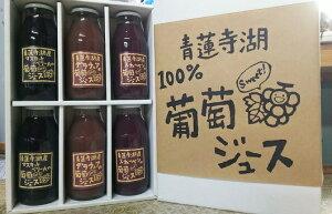 【ふるさと納税】0504 ぶどうジュースセット