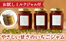 【ふるさと納税】KA-22【お試しミルクジャム付】やさしい甘さのいちごジャム160g×3本