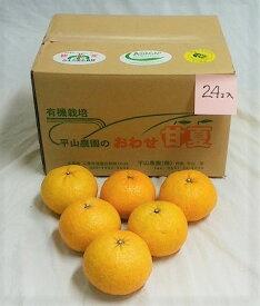 【ふるさと納税】HI-03 採りたて甘夏(農薬・化学肥料不使用)