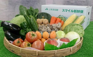 【ふるさと納税】旬の野菜と果物の詰め合わせ ja-04