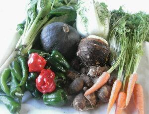 【ふるさと納税】農薬をいっさい使わず栽培した季節の野菜詰め合わせ nh-01