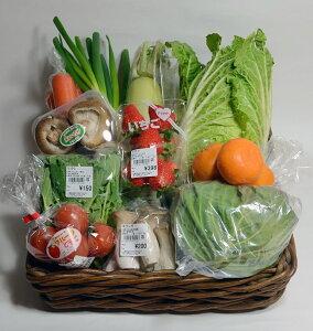 【ふるさと納税】大師の里のとれたて旬の野菜と果物の詰め合わせ fy-02