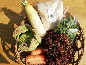 【ふるさと納税】旬の無農薬野菜とアイガモ農法米のセットaf-01