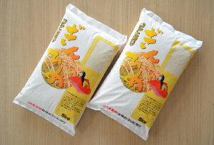 【ふるさと納税】I42令和2年産 三重県産コシヒカリ「ぎんひめ」精米5kg×2袋