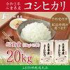 【ふるさと納税】D18令和2年明和町産コシヒカリ10kg×2袋(20kg)『みえの安心食材認定米』