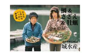 【ふるさと納税】【冷蔵】魚介類セットA 約3kg/鯛 ヒオウギガイ アッパッパ貝 さざえ 牡蠣 かき 海鮮 伊勢志摩