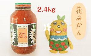 【ふるさと納税】BA016-L花みかんハチミツ