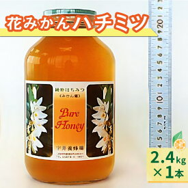 【ふるさと納税】花みかんハチミツ 純粋蜂蜜 2.4kg みかん蜜