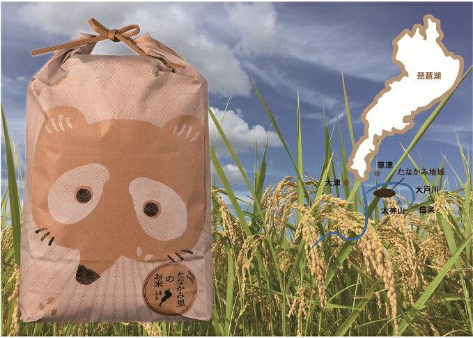 【ふるさと納税】B1842 近江・幻のお米「たなかみの米」精米20kg