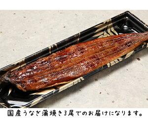 【ふるさと納税】No.287 職人が本気で焼いた国産うなぎ蒲焼き / 魚 惣菜