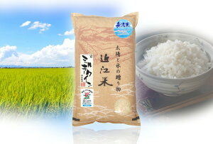 【ふるさと納税】【令和2年産】滋賀県産 環境こだわり栽培米 ミルキークイーン無洗米 【10kg×1袋】