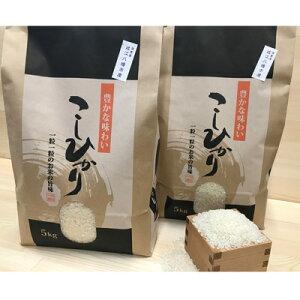【ふるさと納税】令和元年産 近江米 【コシヒカリ10kg】環境こだわり米