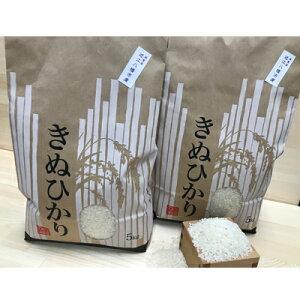 【ふるさと納税】令和元年産 近江米 【キヌヒカリ10kg】環境こだわり米