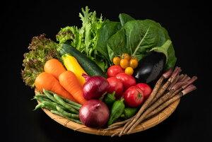 【ふるさと納税】近江野菜詰め合せセット【1.5kg〜2kg】