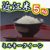【平成29年産】近江米ミルキークイーン白米5kgV003