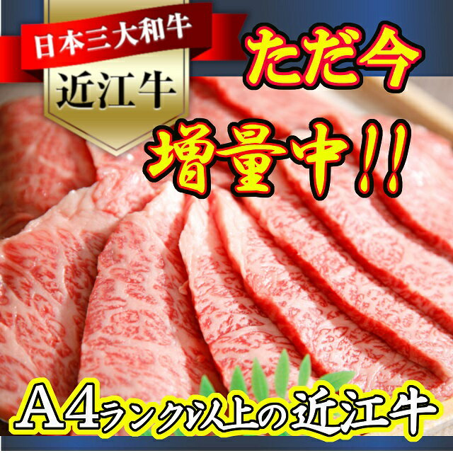 【ふるさと納税】【期間限定10/31まで】近江牛バラ焼肉希少部位500g折箱入り H004
