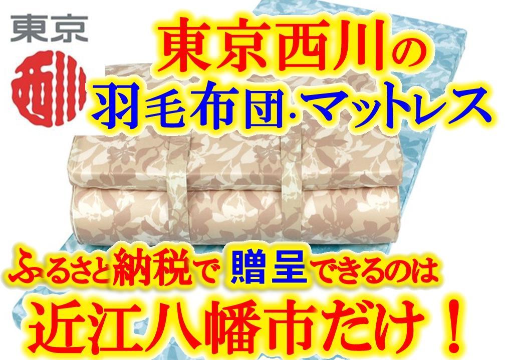 【ふるさと納税】健圧敷きふとん/ソフトタイプ/シングル/ブルー P011_a
