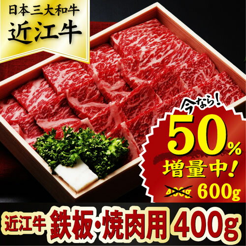 【ふるさと納税】近江牛 鉄板焼・焼肉用 600g S027_a