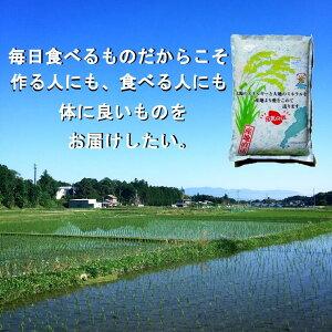 【ふるさと納税】こだわり栽培米「ミルキークイーン」(精米)