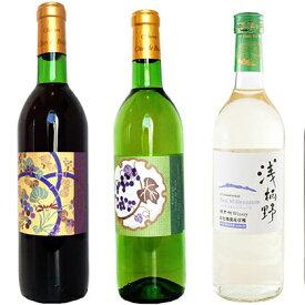 【ふるさと納税】BIWA・浅柄野セット 【赤ワイン・お酒・白ワイン・ワイン・ロゼワイン】