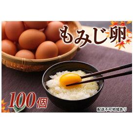 【ふるさと納税】【高級赤玉・安全飼料使用】湖南市産もみじ卵 100個 【卵】