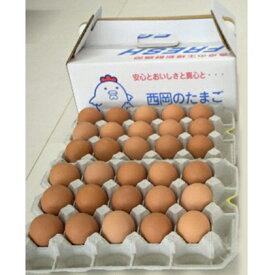 【ふるさと納税】【高級赤玉・安全飼料使用】湖南市産もみじ卵30個 頒布コース(6か月) 【定期便・卵】