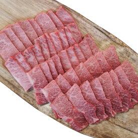 【ふるさと納税】【T-362】大吉商店 近江牛霜降りカルビ焼肉用B