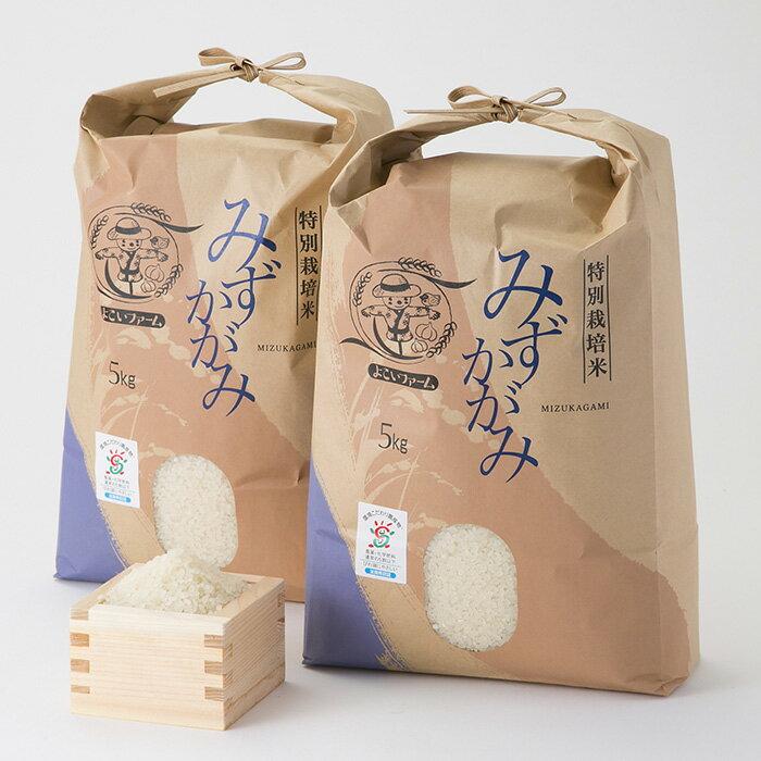 【ふるさと納税】【T-525】よこいファーム 特別栽培米みずかがみA