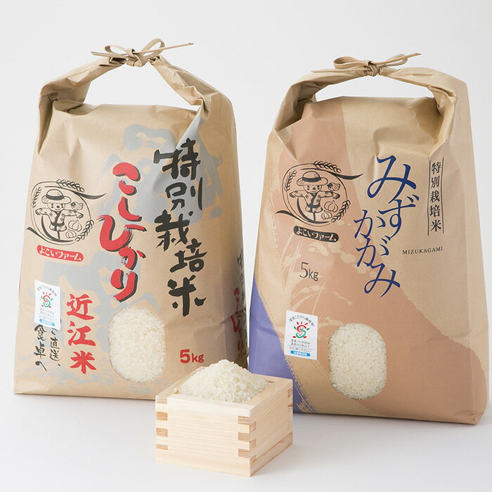 【ふるさと納税】【T-527】よこいファーム 特別栽培米食べ比べセットA