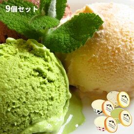 【ふるさと納税】【緊急支援品】ミルクファーム伊吹のアイスクリーム9個セット 【菓子/アイス】