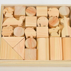 【ふるさと納税】国産ひのき積み木セット(大) 【雑貨・玩具】